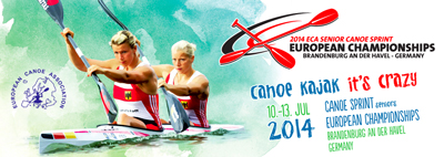 2014-euro-champ-poster